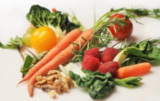 vegan-friendly packaging